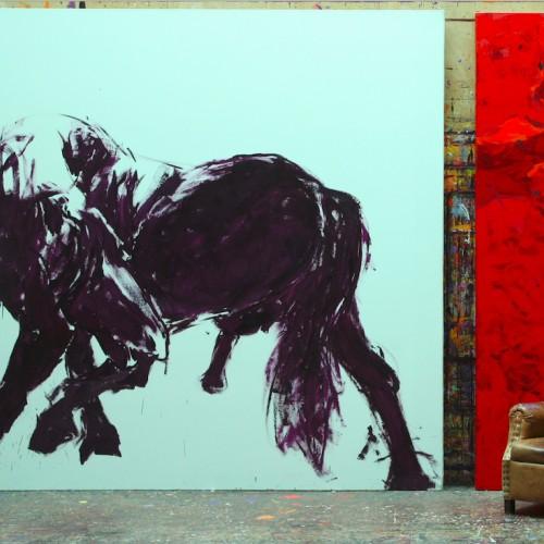 Equus Caballus 1